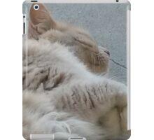 Sleeping Kitty iPad Case/Skin