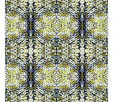 Yellow Warmth Photographic Print