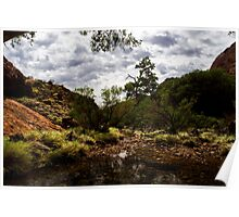 River In The Olgas Poster
