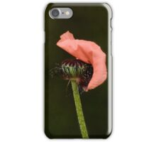 Couple Pink Oriental Poppies  iPhone Case/Skin