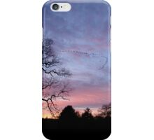 Migration of The Flock iPhone Case/Skin