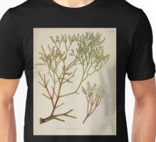 The botany of the Antarctic voyage of H M  discovery ships Erebus and Terror in the Years 1839 1843 Joseph Dalton Hooker V1 087 Unisex T-Shirt