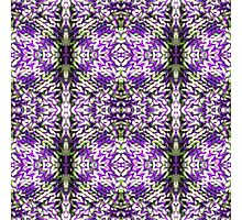 Purple Knitted Circles Photographic Print