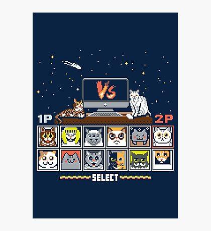 Internet Cat Fight Photographic Print