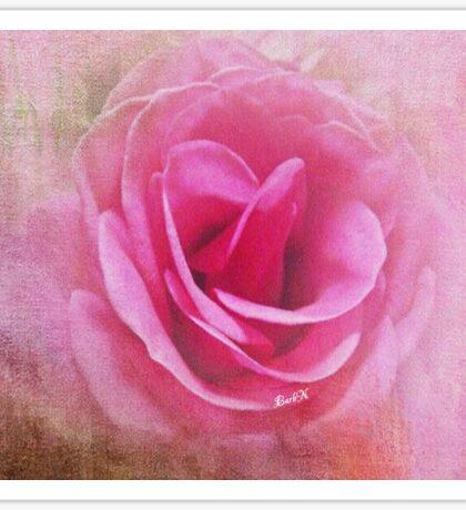 Rose Mural Sticker