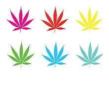 Marijuana Leaf 7 Photographic Print