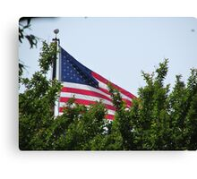 American Flag 2  Canvas Print