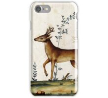 The Italian Deer (16th Century) iPhone Case/Skin