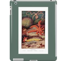 Echinoderms - The Starfish iPad Case/Skin