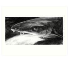 Sarcastic Shark Art Print