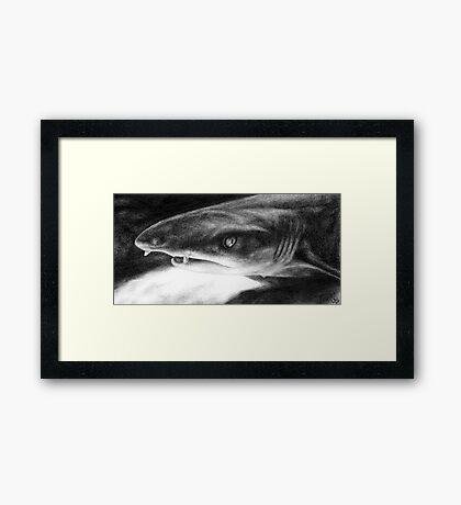Sarcastic Shark Framed Print