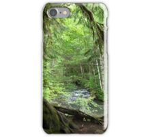 Through the Moss Covered Trees iPhone Case/Skin