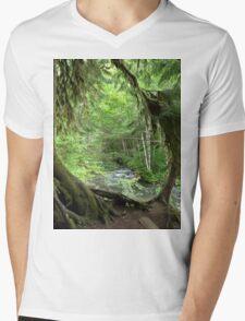 Through the Moss Covered Trees Mens V-Neck T-Shirt