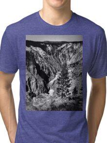 The Tree Tri-blend T-Shirt
