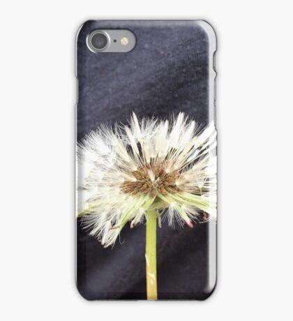 Wet Dandelion Fluff iPhone Case/Skin