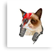 cat david bowie Canvas Print