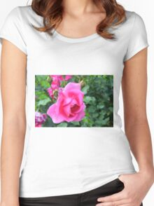 Pink roses in the garden. Women's Fitted Scoop T-Shirt