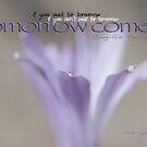 Tomorrow Comes © Vicki Ferrari by Vicki Ferrari
