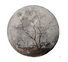 trees on the moon by ketut suwitra