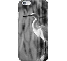 Heron 2 iPhone Case/Skin