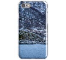 Seabirds iPhone Case/Skin