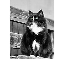 Zoe sitting green -1P- Andre Hote Photography Photographic Print