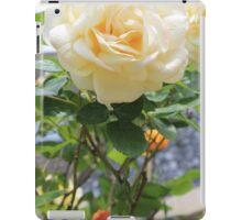 Peach rose. iPad Case/Skin