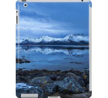Arctic Reflections iPad Case/Skin