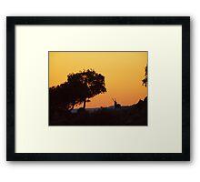 Red Deer Stag at Sunset - Sierra de Andujar Framed Print