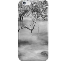 Mangroves at Town Beach, Broome, Western Australia iPhone Case/Skin