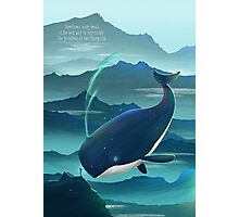 Wondering Whale - LIMITED EDITION Photographic Print