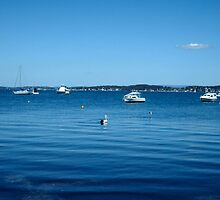 Lake Macquarie by missmoneypenny