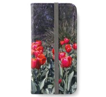 Spring—Royal Tasmanian Botanical Gardens iPhone Wallet/Case/Skin