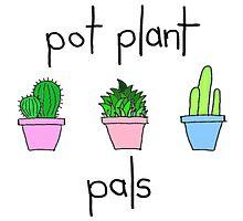 pot plant pals Photographic Print