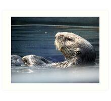 Sea Otter NYC Aquarium Art Print