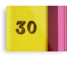 30 Metal Print