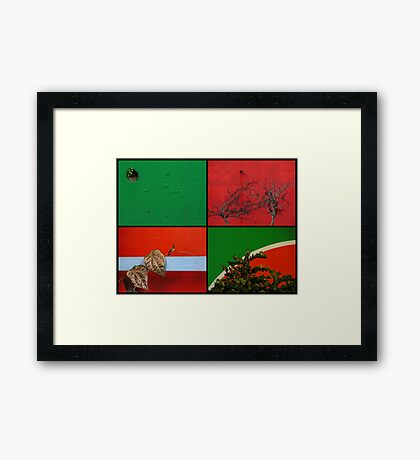Urban Nature Collage Framed Print