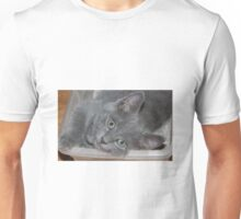 "Charley "" I Can Nap Anywhere!"" Unisex T-Shirt"
