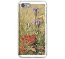 John Henry Hill (American, ). Fringed Gentians, iPhone Case/Skin