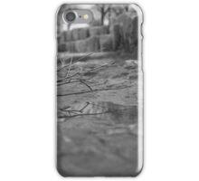 Twig iPhone Case/Skin