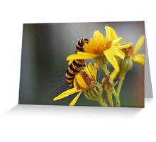 Yellow and stripes Greeting Card