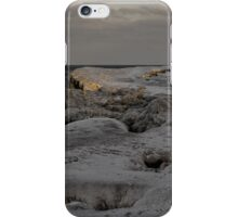 Frozen Lakeshore iPhone Case/Skin