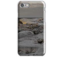 Frozen Lakeshore iPhone Case/Skin