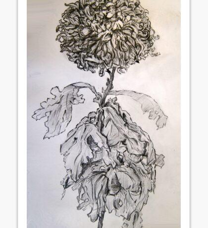 Chrysanthemum after Piet Mondrian Sticker