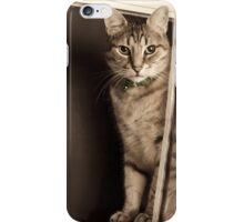 Curtain Call iPhone Case/Skin