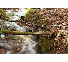 The spring water Photographic Print