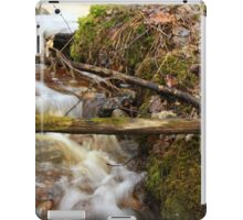 The spring water iPad Case/Skin