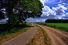 Countryroad - Steenakkersweg by Jo Nijenhuis