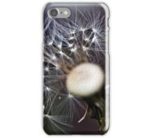feathers of time iPhone Case/Skin