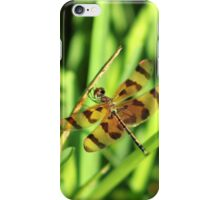 Brown and Yellow Dragonfly iPhone Case/Skin